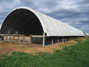 The fabric structures allow natural light and air flow, making them a much more comfortable environment for animal as opposed to enclosed tin sheds.
